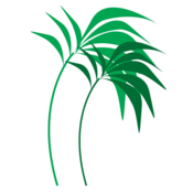 Logo for Winterizing Exotic Trees for cold climates Idea